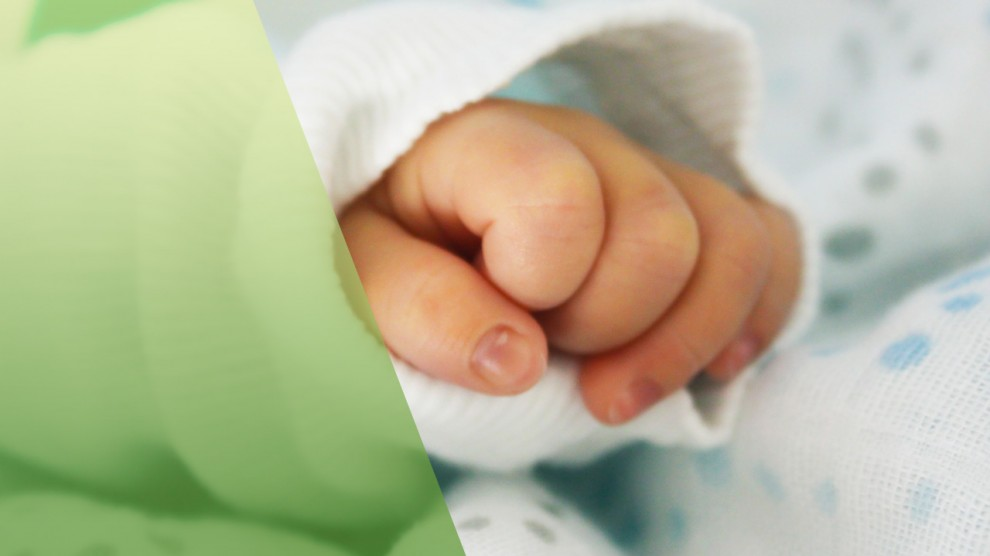 El ácido fólico, esencial para el buen desarrollo del bebé